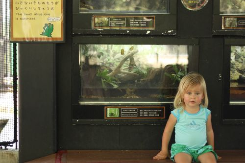 1st preschool and zoo 082