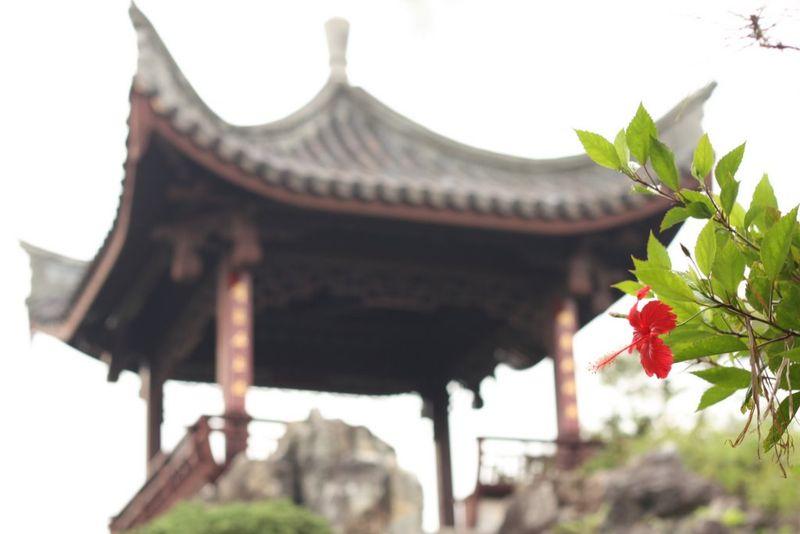 Fukushu-en Gardens 256