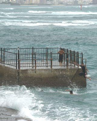 Typhoon 361